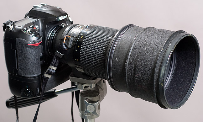 """The amazing Nikkor 200mm f/2.0 ED-IF. This lens is so rare that mine is the only one I have ever actually seen. Unlike the so-called """"kit"""" lenses, this behemoth is super-sharp wide-open, and that's f/2.0, which lets in a lot of light when you need it. I seldom shoot it at any other aperture"""