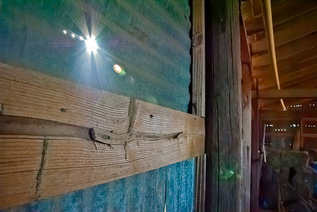 I passed the barn on the south end of the patch. The sun is shining through a series of small holes in the sheet metal.