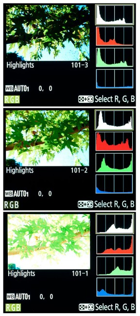 This is an image displayed on the monitor of a modern digital camera. The top frame is set to -1.7 exposure compensation, the middle to 0.0, and the bottom is set to +1.7 exposure compensation.