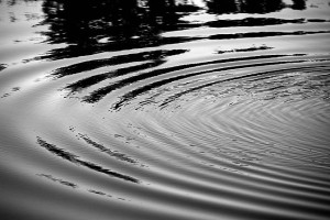 I made these ripples by throwing a stick into the pond.