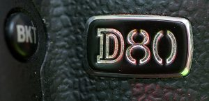 The badge on the left front of the D80 is smart-looking.