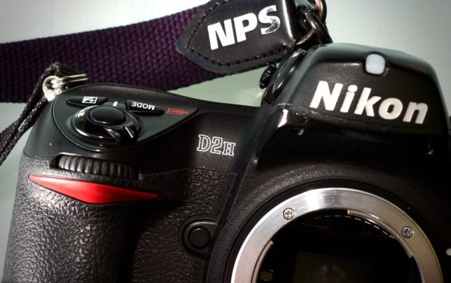 The Nikon D2H digital camera was Nikon's news and sports flagship camera in 2003. I have three working D2Hs, and I get them out once in a while and make great images with them.
