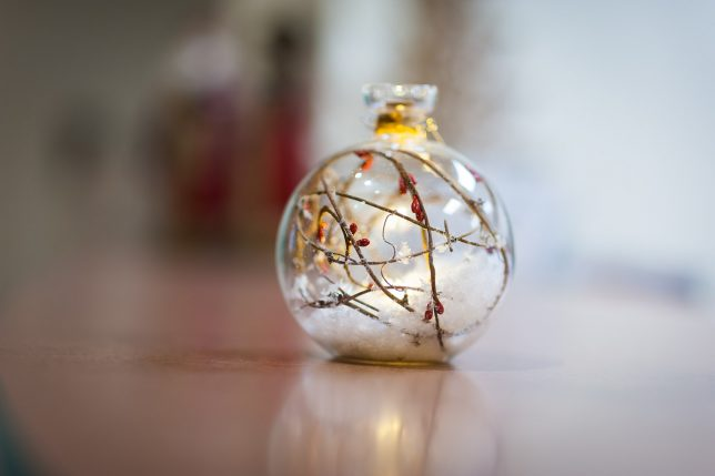 Christmas ornament, December 2019; 85mm f/1.4 at f/1.4.