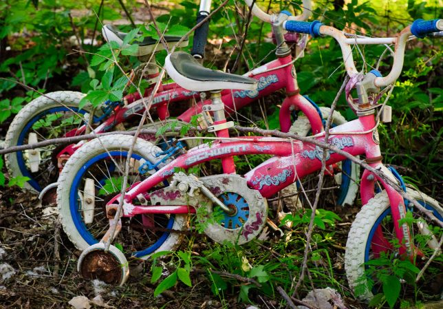 While I was photographing flowers, I came across these kid's bikes being taken back by the weeds.