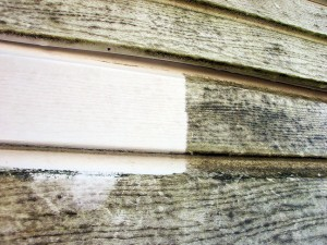 Dirty siding with a clean streak from power washing
