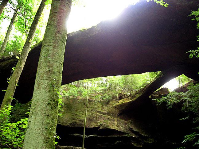 The Natural Bridge of Alabama