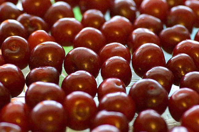 Dorothy's cherries in a glass pie pan, lit by the kitchen window; Abby held the pan so I could make the shot