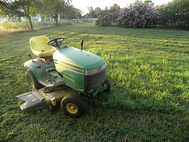 The John Deere lawn tractor on the South 40, just before sunset, with the Rose-of-Sharon in the background