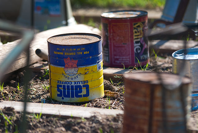 Have a cup of shelter: I removed these coffee cans and buckets this morning from my tomato and pepper plants, and they all seemed to have weathered the cold spell nicely.