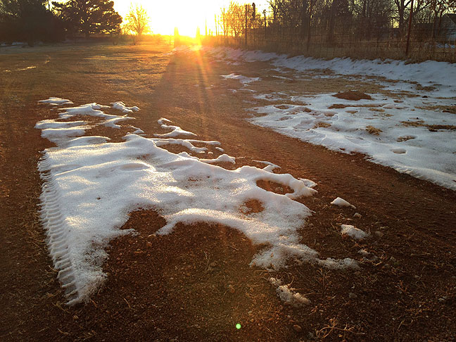 Early morning sun shines on the remnants of snow on our driveway today.