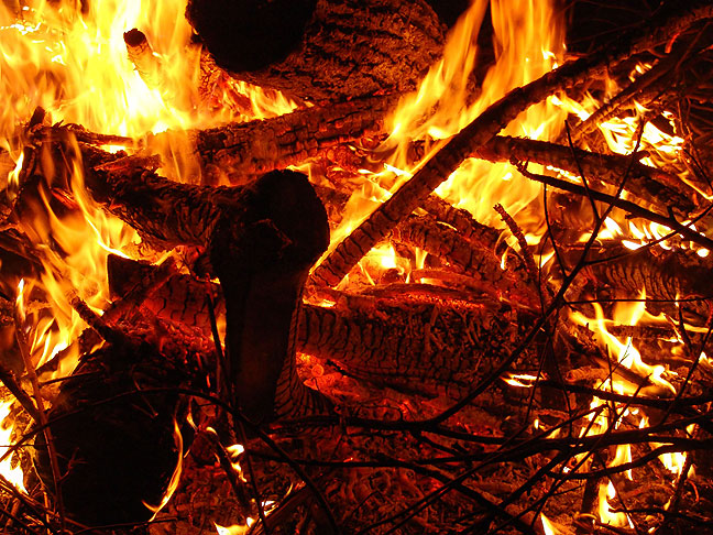 Fire roars as I burn my brush pile last winter. I would be very at home as part of this after I'm gone.