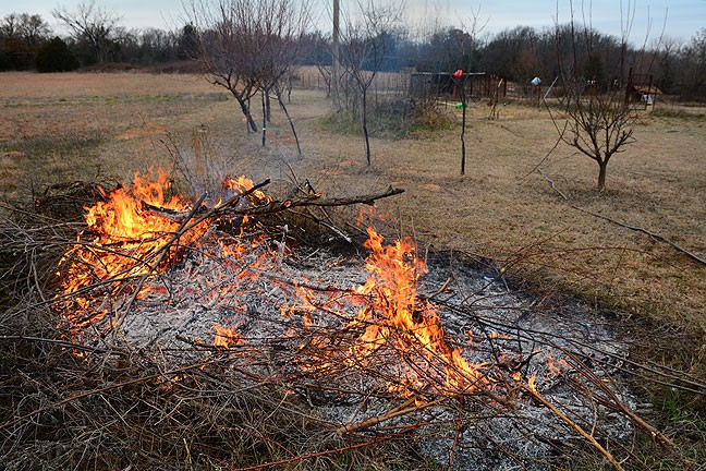 I've been collecting this brush pile since Dan Marsh and I burned the last one a year ago.