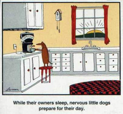 I have no doubt our dogs do this, because...