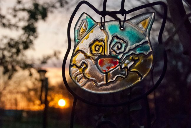 The rising sun shines through Abby's cat stained glass this morning.