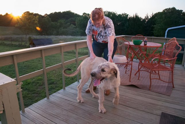 Abby tries to usher Hawken around the back deck as the sun goes down Sunday.