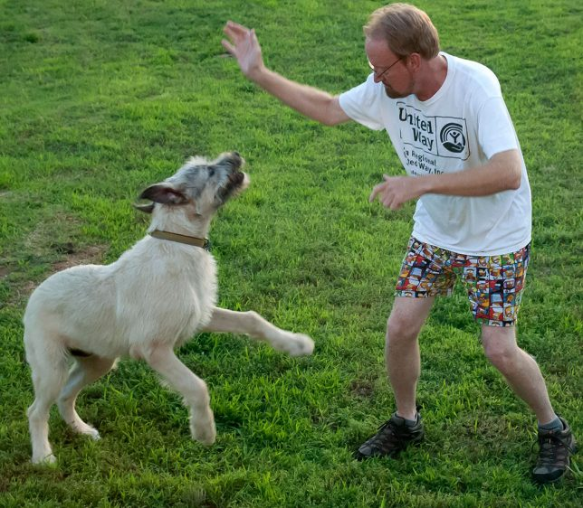Your humble host plays with Hawken the Irish Wolfhound in the back yard Sunday night.