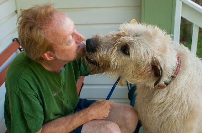 I don't know of a gentler, more affectionate dog on the planet than Hawken the Irish Wolfhound.