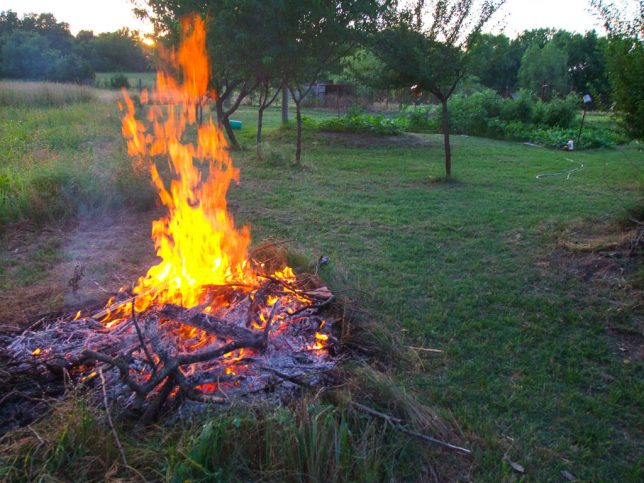 The smaller of my two brush piles burns near the garden and the orchard last night. In November, I burned the one on the pond.