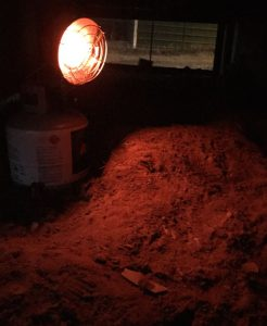 I lit Hawken's propane heater tonight. It's bone cold out, but he'll be warm in his space under the back deck.