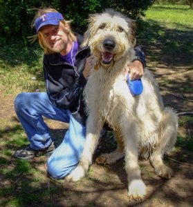 Walking my mighty Wolfhound Hawken has been good for both of us in all respects.