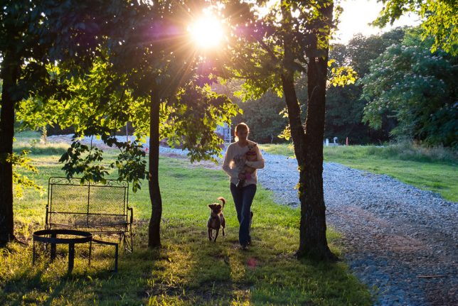I think this is one of the most beautiful images I've made this year: my wife Abby carrying her Chihuahua Summer as the neighbor dog Elly walks alongside as the sun goes down on our patch of green here in Oklahoma.