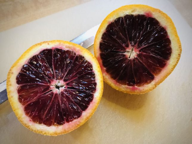 Blood oranges are quite striking, and quite delicious. Part of my consumption of fresh fruit right now is that it's ripe, and part of it is that it is something real, and smart, to do in a health crisis.