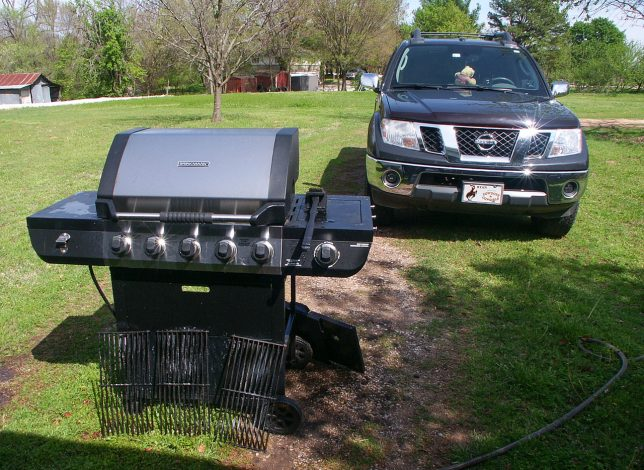 Among the jilliondy seven things to do around the house in your time of sequestration is that long, long list of chores you've been ignoring. Last weekend, I washed the propane grill and the truck. It felt pretty good to work in the sunshine.