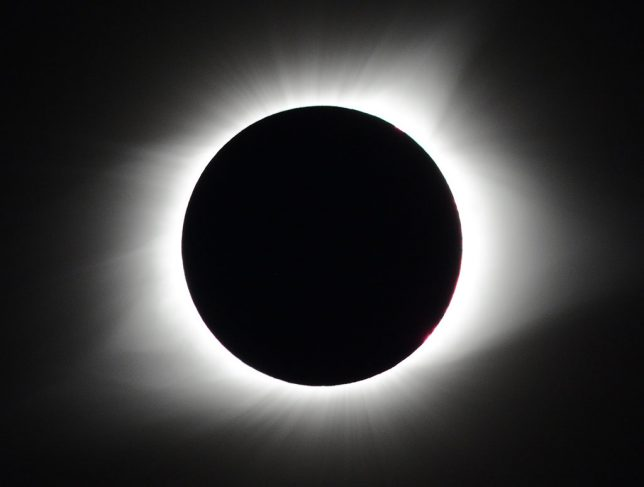 The stellar corona is visible in this image of the Great American Eclipse shot in St. Francois State Park, Missouri, August 21, 2017.