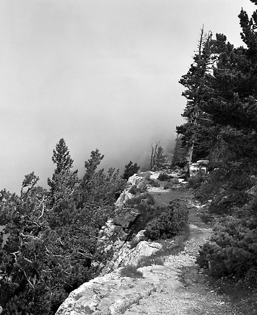 Clouds and trail, Sandia Crest, New Mexico.