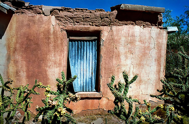 Adobe house and cholla cactus, Cuervo, New Mexico