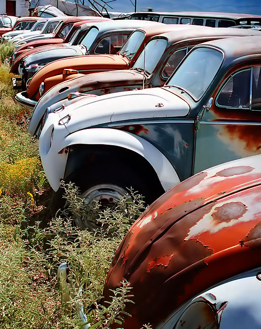 This Alamogordo, New Mexico salvage yard held a number of derelict Volkswagens.