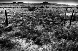 I find that I am drawn to the look of the empty, open rangeland common to New Mexico.