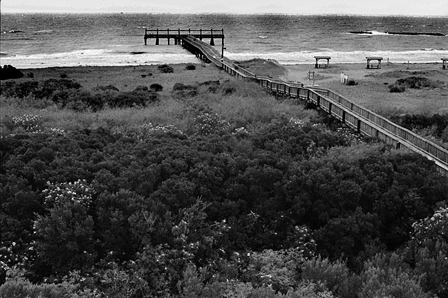 Pier and Surf, Grand Isle State Park
