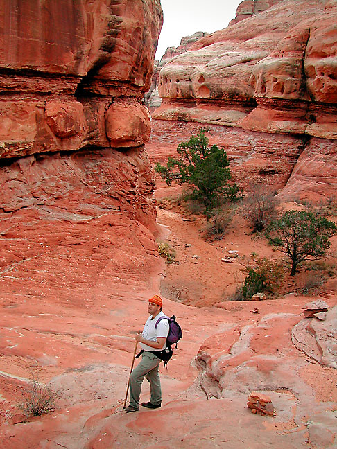 David pauses for a moment as we make our way down from Chesler Park to Elephant Canyon in the Needles District at Canyonlands.