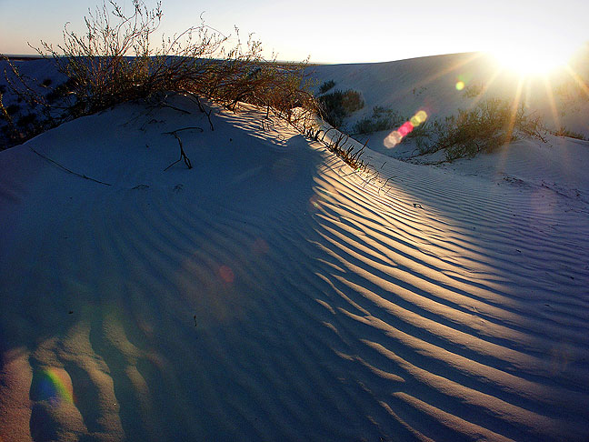 The setting sun shines across the gypsum dunes at Guadalupe Mountains National Park.