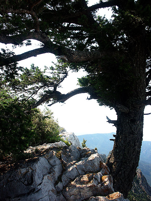 Windswept cliffs of Sandia Crest, which overlooks Albuquerque 5000 feet below