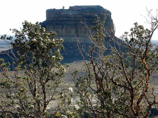 Fajada Butte is visible from the Chaco Canyon Overlook trail.