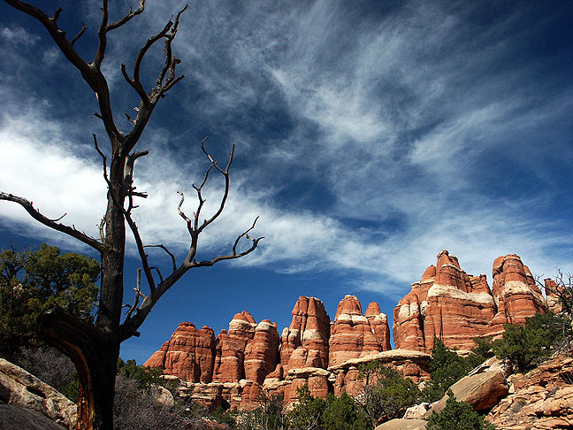 Brilliant sun and a beautiful sky enhance Elephant Canyon in the Needles District at Canyonlands National Park.