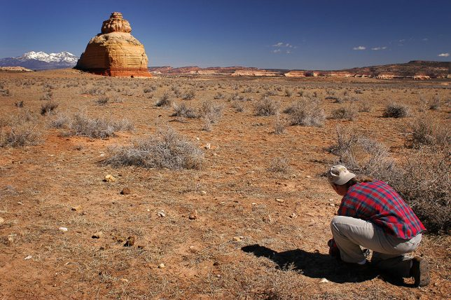 Michael attempts to photograph Church Rock on U.S. 191 in southeastern Utah.