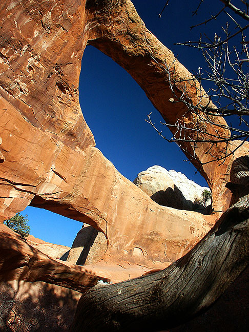Double-O Arch is at the end of the Primitive Loop trail on the north end of Arches.