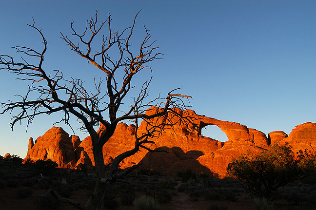 Skyline Arch takes on a deep amber hue at sunset in Arches National Park.