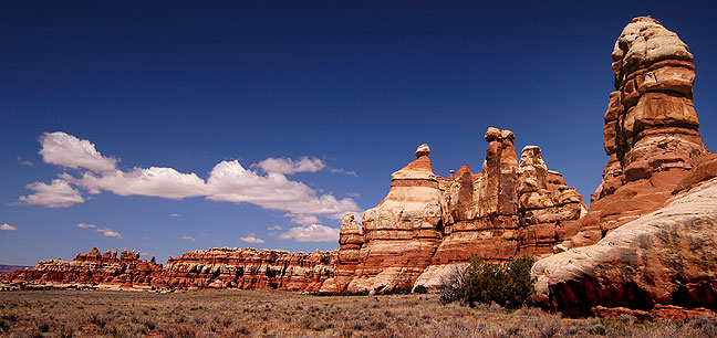 This view shows a flat area surrounded by spires deep inside Canyonland's Chesler Park.