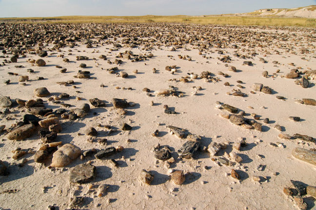 Scattered stones on a playa along the Castle Trail, Badlands.