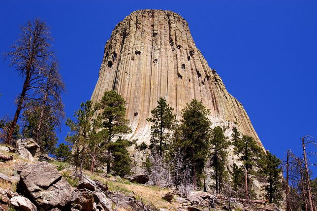 The Devil's Tower is set against a deep blue summer sky.