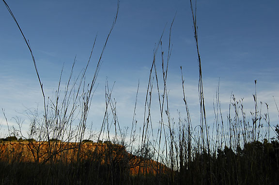 Grass and Cliffs, Late Afternoon.