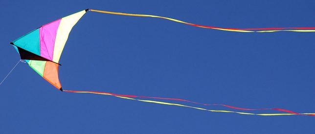 I saw this kite flying in the perfect blue skies above White Sands.
