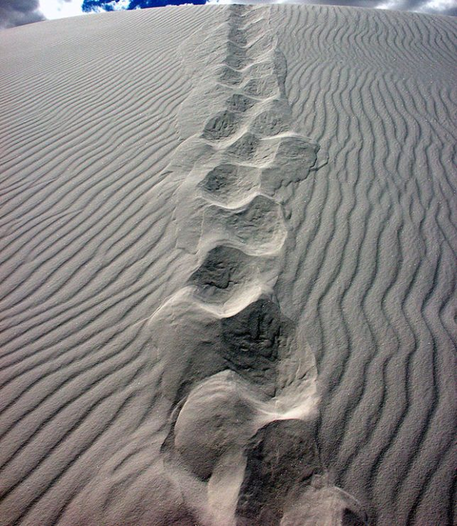 My tracks are visible in the sand at White Sands.