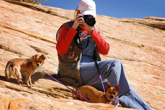 With the dogs leashed to her, Abby makes pictures near the natural bridge in Butler Wash.