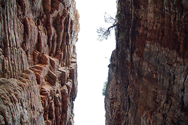 The Devil's Hall forms a tall, square passage in the heart of the Guadalupe Mountains.