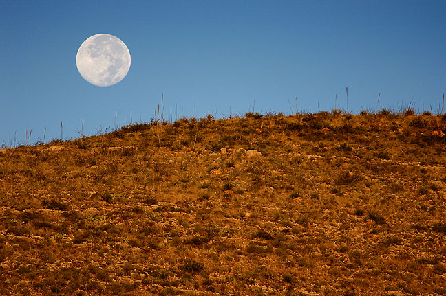 The moon sets on the Old Guano Road trail at Carlsbad Caverns.